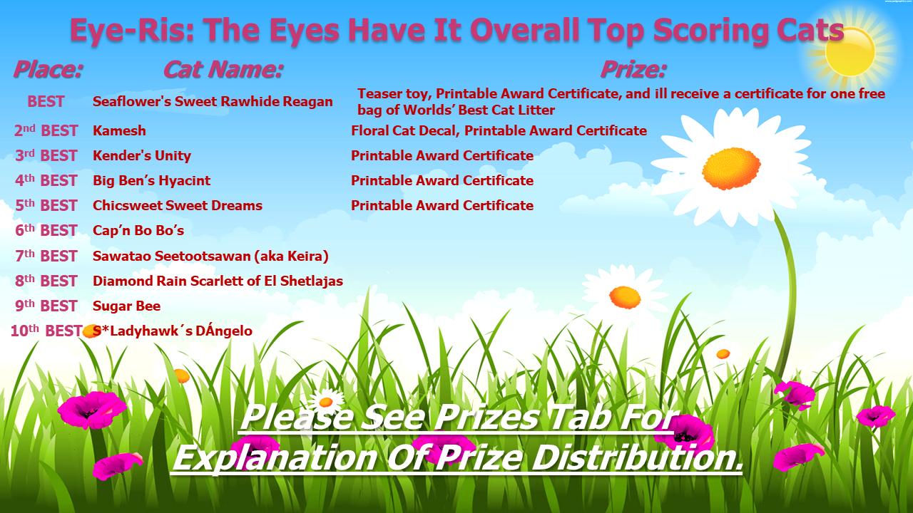 Eye-Ris: The Eyes Have It
