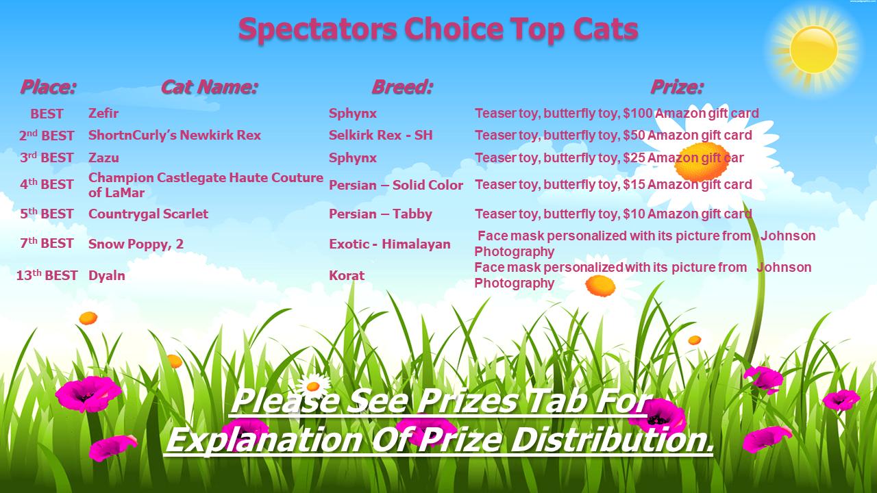 Spectators Choice Top Cats